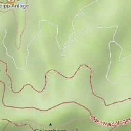exotenwald weinheim plan